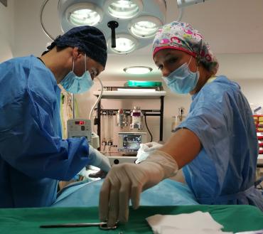 cirugia_centro_veterinario_13_de_diciembre