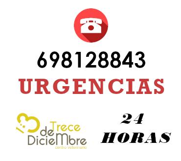 urgencias_13_diciembre_vigo_veterinariaxcf